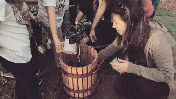 Orto Magia, dall'uva al vino. Educazione alimentare e ambientale