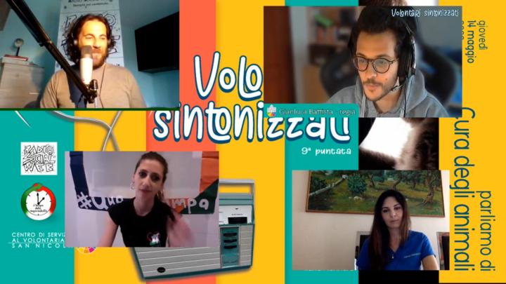 Ep9 – Volontari Sintonizzati. Parliamo di cura degli animali
