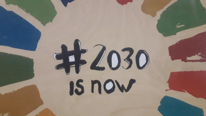 Sviluppo Sostenibile, gli obiettivi dell'Agenda 2030 «Le nostre azioni sono il nostro futuro»